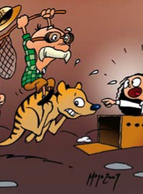Jakten på den tasmanska pungvargen
